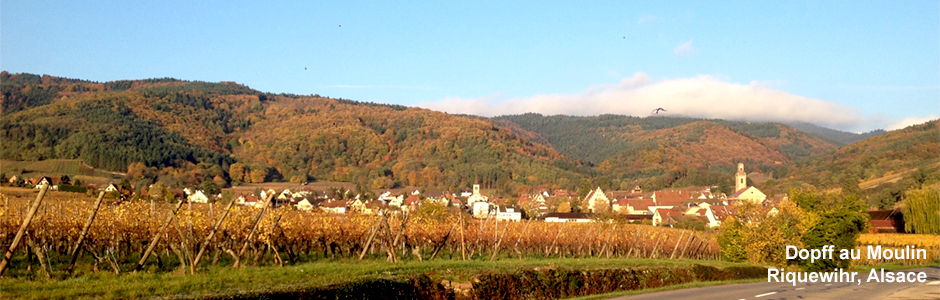 141107_Riquewihr_website.jpg