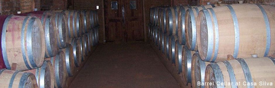 Barrel-room-at-Casa-Silva.jpg